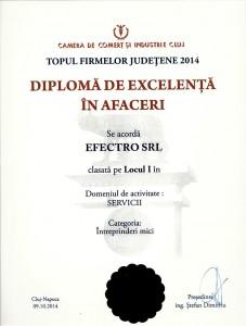 Diploma de Excelenta Servicii IT Cluj efect.ro