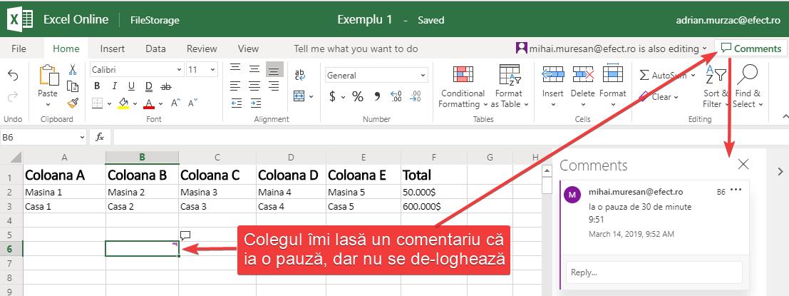 Un fișier Excel accesat concomitent de două persoană, una din care decide că are nevoie de o pauză.
